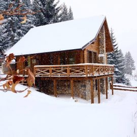 Snowshoe and adventure dining in guesthouse